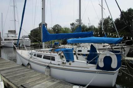 Catalina 27 for sale in United States of America for $17,500 (£13,241)