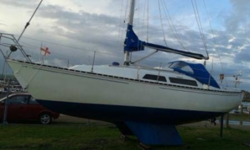 Image of Trapper Yachts 501 for sale in United Kingdom for £11,995 BRIGHTON, United Kingdom