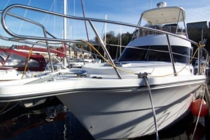 Rodman 12.50 FISHER PRO for sale in United Kingdom for £295,000