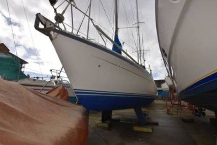 Moody 29 for sale in United Kingdom for £16,995