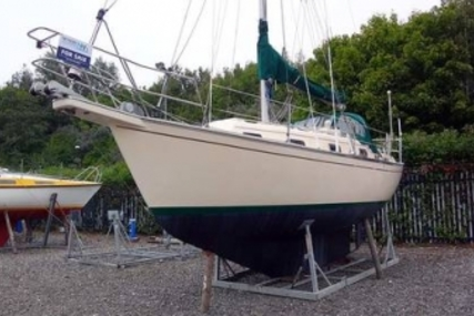Island Packet 29 for sale in United Kingdom for £44,995