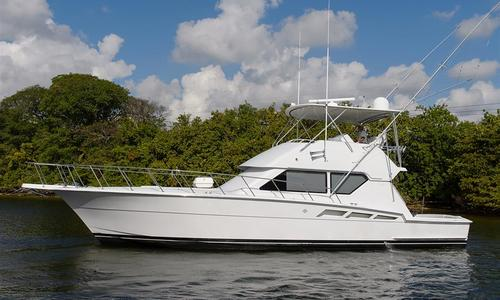 Image of Hatteras Convertible for sale in United States of America for $250,000 (£195,986) Dania, United States of America