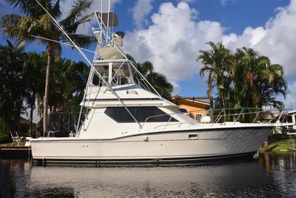 Hatteras Convertible for sale in United States of America for $85,000 (£64,547)