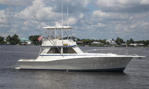 Image of Viking Yachts Convertible for sale in United States of America for $119,000 (£93,679) Stuart, United States of America