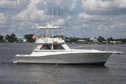 Viking Yachts Convertible for sale in United States of America for $119,000 (£91,618)