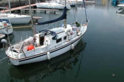 WESTERLY YACHTS WESTERLY 31 BERWICK for sale in Ireland for €14,500 (£12,944)