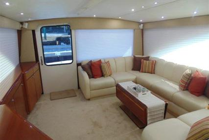Ocean Yachts Convertible for sale in United States of America for $389,000 (£278,286)