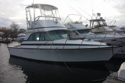 Bertram 35 Convertible for sale in United States of America for $43,500 (£35,428)