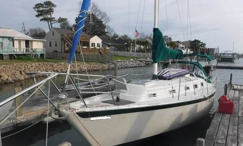 Image of Irwin Yachts 34 for sale in United States of America for $20,000 (£14,921) Virginia Beach, Virginia, United States of America