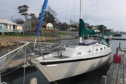 Irwin Yachts 34 for sale in United States of America for $20,000 (£15,229)