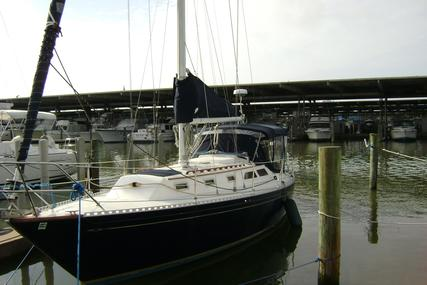 Islander 36 Sloop for sale in United States of America for $35,900 (£27,569)