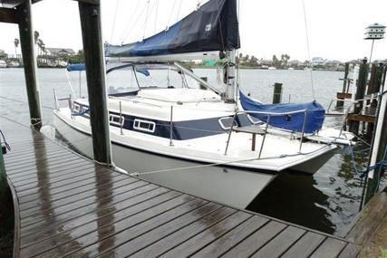 AmeriCat/Endeavour Catamaran 30 for sale in United States of America for $49,999 (£37,549)