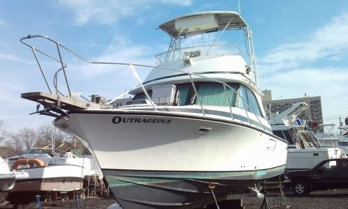 Image of Bertram 35 Convertible for sale in United States of America for $43,500 (£34,096) Staten Island, New York, United States of America