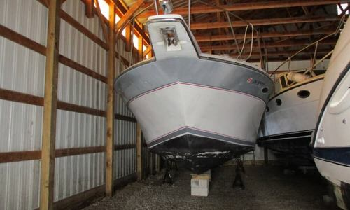 Image of Chris-Craft 320 Amerisport Express for sale in United States of America for $14,500 (£10,548) Marblehead, Ohio, United States of America