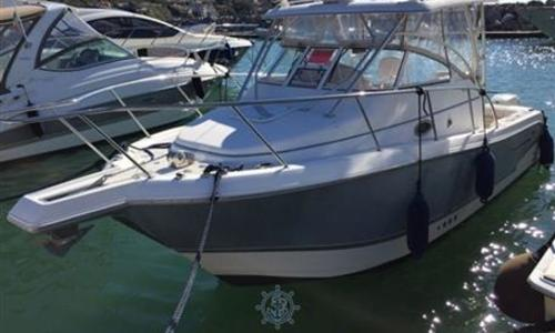 Image of Pro-Line Boats 29 EXPRESS for sale in Italy for €70,000 (£62,656) Toscana, Italy
