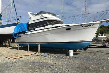 Bayliner 3288 Flybridge for sale in United Kingdom for £35,000