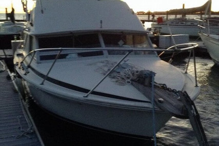 Bertram Sportfish 28 for sale in United States of America for $17,500 (£12,381)
