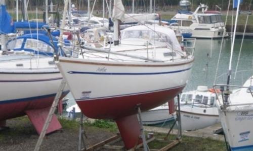 Image of Sadler 29 for sale in United Kingdom for £15,500 LEVINGTON, United Kingdom