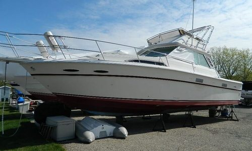Image of Sea Ray SRV 390 for sale in United States of America for $10,000 (£7,432) Saint Joseph, Michigan, United States of America