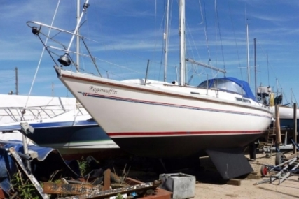 Sadler 29 for sale in United Kingdom for £15,995