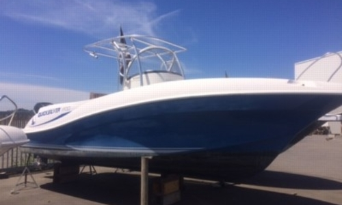 Image of Quicksilver 800 Commander for sale in France for €29,900 (£26,191) BREST, France