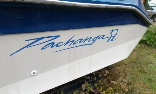 Image of Sea Ray Pachanga 32 for sale in United States of America for $17,500 (£13,549) Burnham, Illinois, United States of America