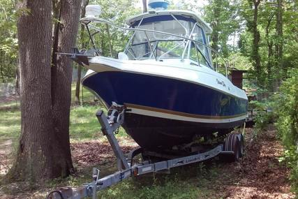 Aquasport 250 Explorer for sale in United States of America for $21,900 (£17,345)