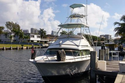 Bertram 33 Sport Fisherman for sale in United States of America for $38,000 (£28,867)