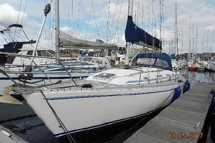 Starlight 35 for sale in United Kingdom for £49,500