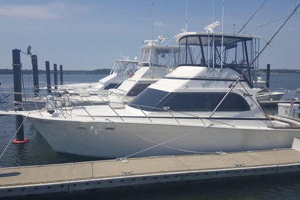 Egg Harbor Golden Egg 38 for sale in United States of America for $93,000 (£72,415)