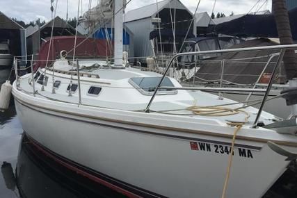 Catalina 34 for sale in United States of America for $44,900 (£33,720)
