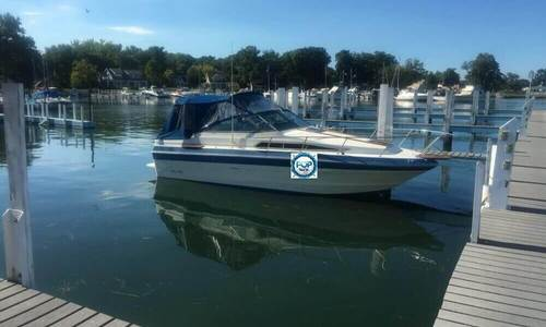 Image of Sea Ray 250 Sundancer for sale in United States of America for $9,000 (£6,715) Monroe, Michigan, United States of America