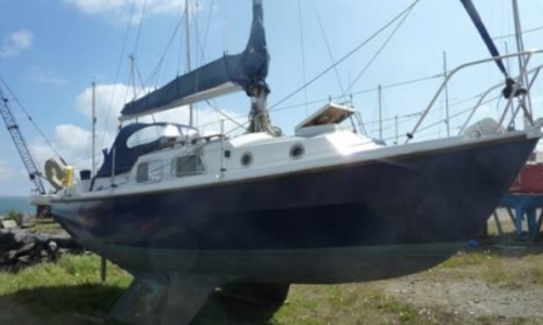 Image of Westerly 25 Centaur for sale in Ireland for €6,500 (£5,722) Ireland