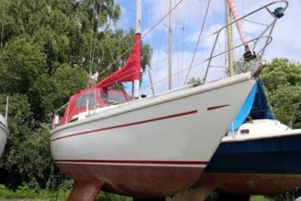 Sadler 29 for sale in United Kingdom for £16,750