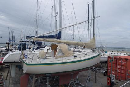 Nonsuch 26 for sale in Pakistan for £17,500
