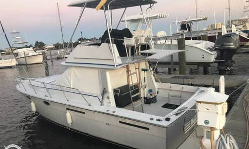 Image of Tiara 3100 Continental for sale in United States of America for $22,500 (£16,096) Orange Beach, Alabama, United States of America
