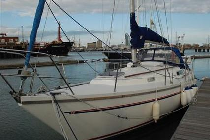 Sadler 29 for sale in United Kingdom for £17,900