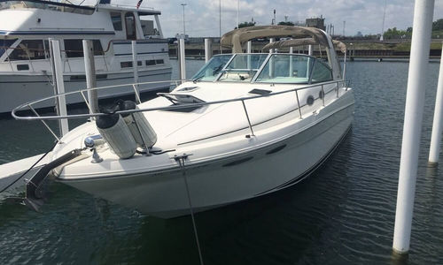 Image of Sea Ray 290 Sundancer for sale in United States of America for $38,900 (£28,877) Grosse Pointe Park, Michigan, United States of America
