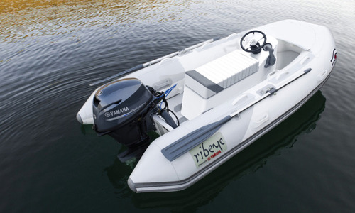 Image of Ribeye TS310 for sale in United Kingdom for £7,900 South West, United Kingdom