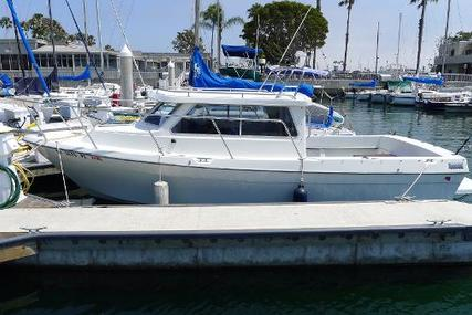 Skagit Orca for sale in United States of America for $38,000 (£27,418)