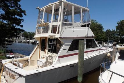 Viking Yachts Open Bridge for sale in United States of America for $24,500 (£20,165)