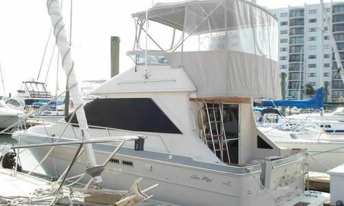 Image of Sea Ray 305 Sedan Bridge for sale in United States of America for $22,700 (£16,870) Wrightsville Beach, North Carolina, United States of America