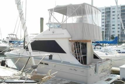 Sea Ray 305 Sedan Bridge for sale in United States of America for $22,700 (£17,057)