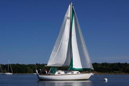 Cape Dory 28 for sale in United States of America for $24,000 (£18,213)