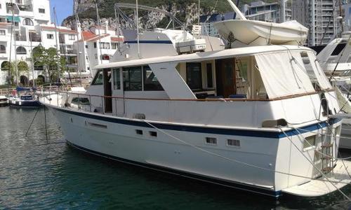 Image of Hatteras 53 Classic Motor Yacht for sale in Gibraltar for £125,000 Gibralter Bay Marina, Gibraltar