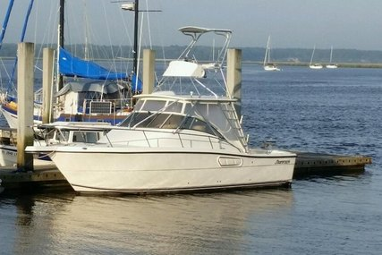 Shamrock 290 Offshore for sale in United States of America for $79,900 (£57,648)