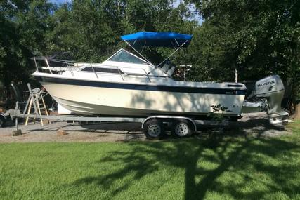 Wellcraft 248 Sportsman for sale in United States of America for $12,500 (£9,296)