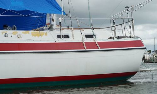 Image of Morgan Out Island 415 Ketch for sale in United States of America for $55,000 (£39,494) Madeira Beach, Florida, United States of America