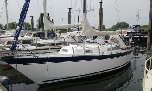 Image of Wibo 930 for sale in Netherlands for €17,900 (£15,643) Jachthaven Rijn en Lek, Wijk bij Duurstede, Netherlands