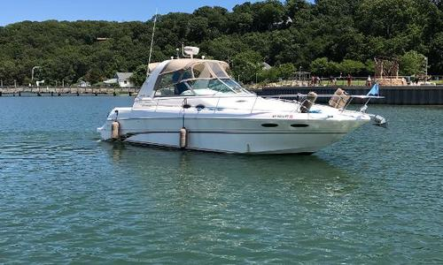 Image of Sea Ray 310 Sundancer for sale in United States of America for $52,000 (£37,069) Port Jefferson, NY, United States of America